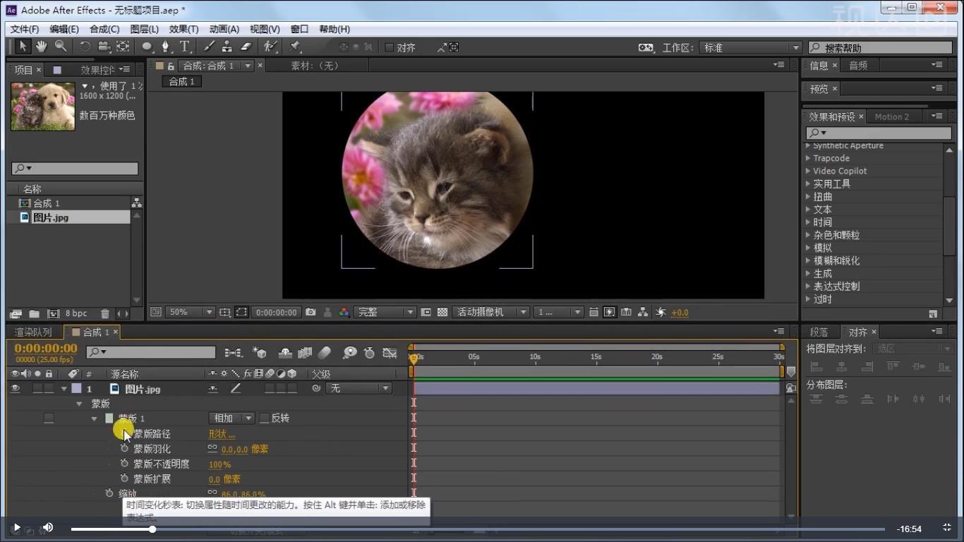2.打开蒙版,每个属性旁添加关键帧,移动时间轴,调整蒙版路径形状,产生动画;.jpg
