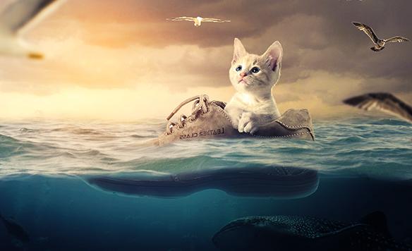 ps小猫漂流记场景合成海报制作视频教程