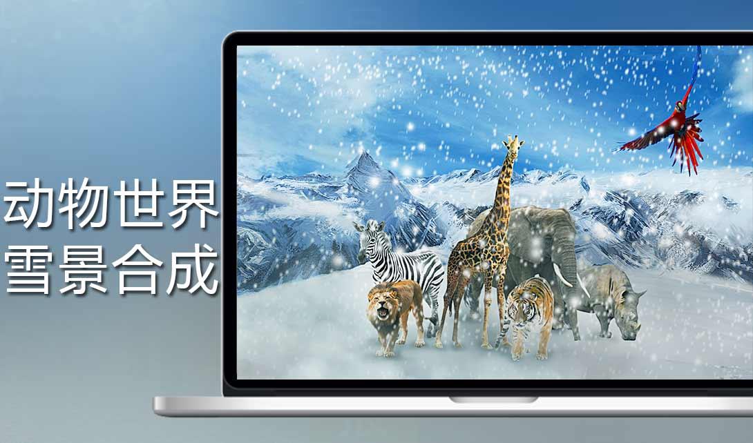 ps动物世界雪景合成海报制作
