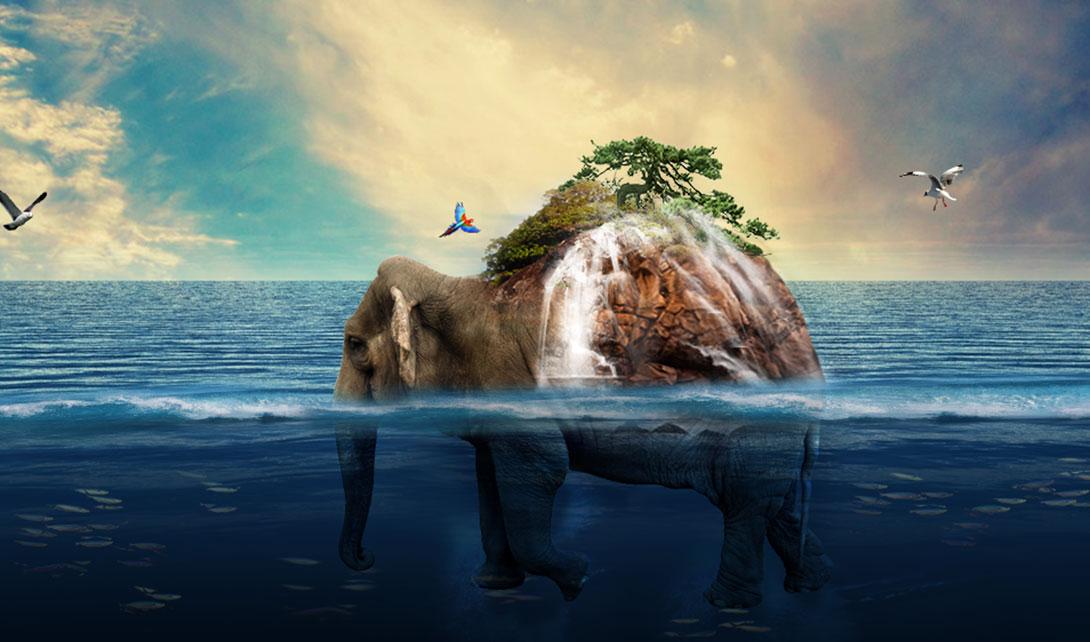ps大象创意场景合成