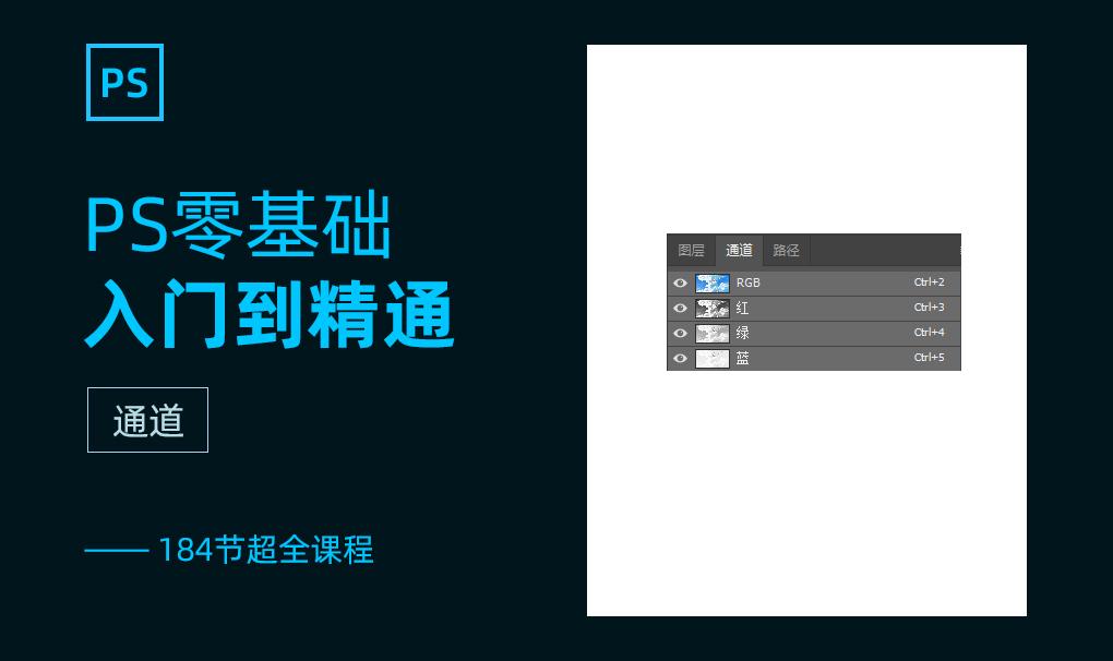 PS零基础入门到精通系列课【已完结】视频教程